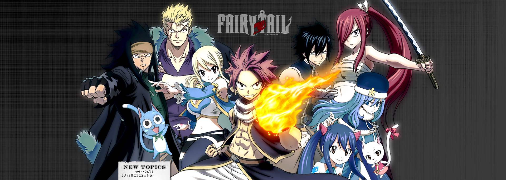Fairy Tail E250 VF
